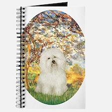 Spring / Bolgonese Journal