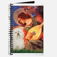 Mandolin Angel & Bolognese Journal