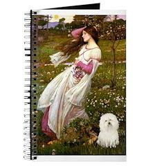 Windflowers & Bolognese Journal