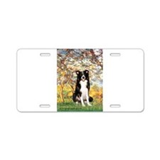 Spring & Border Collie Aluminum License Plate