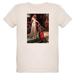 Accolade / Border T T-Shirt