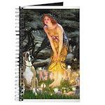 Fairies & Boxer Journal