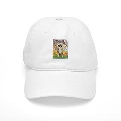 Spring with a Boxer Baseball Cap