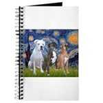 Starry / 3 Boxers Journal
