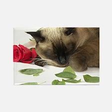 Unique Siamese cat Rectangle Magnet