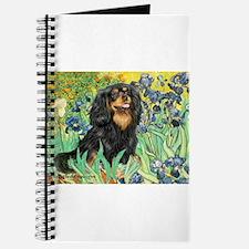 Irises & Cavalier Journal