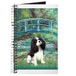 Bridge / Tri Cavalier Journal
