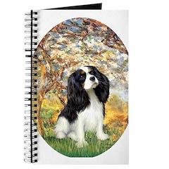 Spring & Tri Cavalier Journal