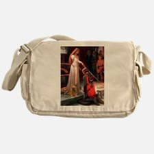 Accolade / Cocker (brn) Messenger Bag