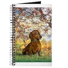 Spring / Dachshund Journal