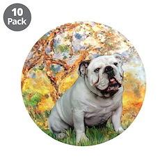 Spring/ English Bulldog (#9) 3.5