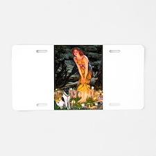 Fairies / Smooth T (#1) Aluminum License Plate
