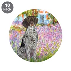 Garden/German Pointer 3.5