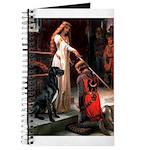 Accolade / Gr Dane (bl) Journal