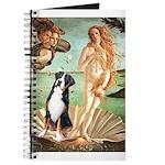 Venus / GSMD Journal