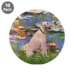 Lilies2/Greyhound (f) 3.5