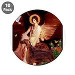 Angel / Irish Setter 3.5
