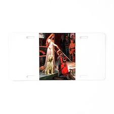 Accolade/Italian Spinone Aluminum License Plate