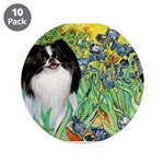 Irises/Japanese Chin 3.5