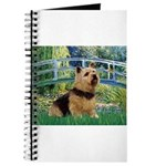 Bridge / Norwich Terrier Journal