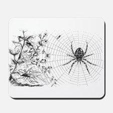 Creepy Spider Web Line Art Mousepad
