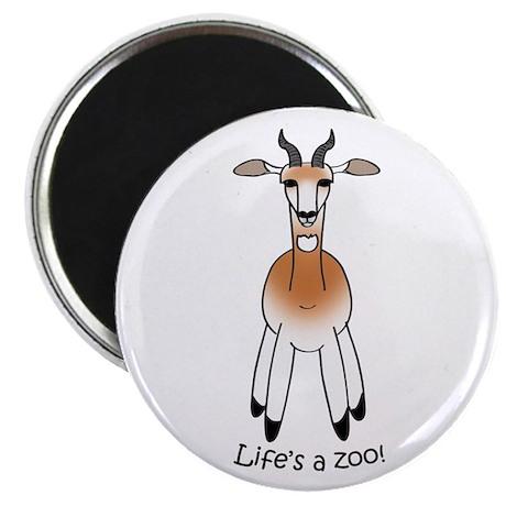 Dama Gazelle Magnet