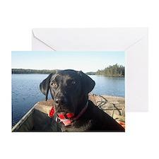 Black Labrador Retriever Card Greeting Cards