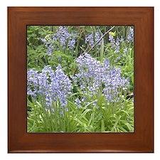 Bluebell Framed Tile