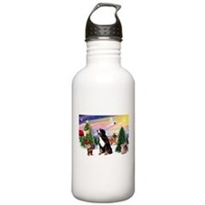 Treat for Bernese Mt Dog Water Bottle