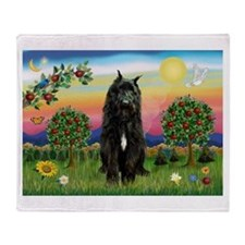 Bouvier/Bright Country Throw Blanket