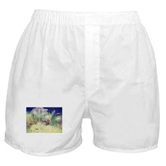 The Fairy Circus Boxer Shorts