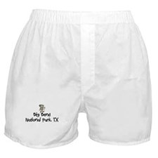 Hike Big Bend Nat Park (Boy) Boxer Shorts