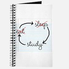 'Study, Study, Study' Journal