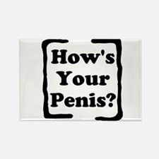 How's Your Penis Rectangle Magnet (10 pack)
