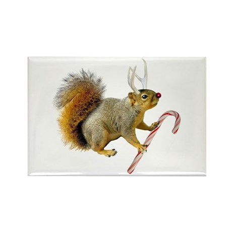 Reindeer Squirrel Rectangle Magnet (10 pack)
