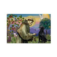 St. Francis & FCR Rectangle Magnet (10 pack)
