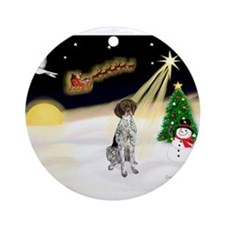 Night Flight/GSHP Ornament (Round)