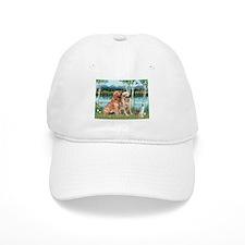 Birches / Golden Baseball Cap
