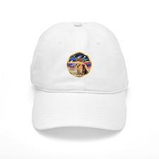 XmasStar/ 2 Labs Hat