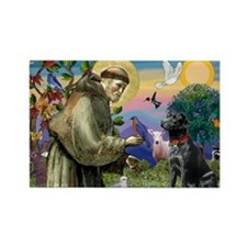 St Francis Black Lab Rectangle Magnet (10 pack)