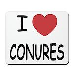 I heart conures Mousepad