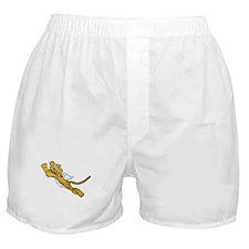 Flying Tiger Boxer Shorts