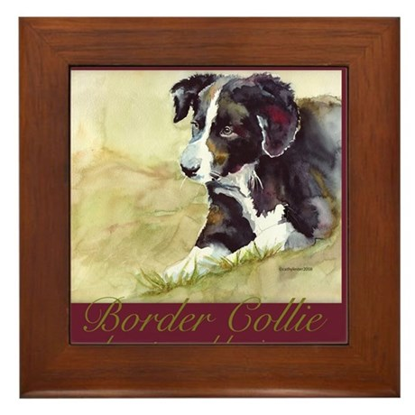 Border Collie Beauty & Brains Framed Tile