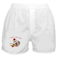 I Believe in Santa Paws Boxer Shorts