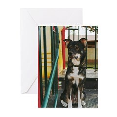 Fine Art/Posters Greeting Cards (Pk of 20)