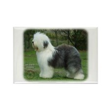 Old English Sheepdog 9F054D-18 Rectangle Magnet (1