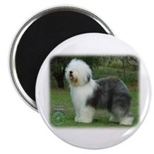 "Old English Sheepdog 9F054D-08 2.25"" Magnet (100 p"