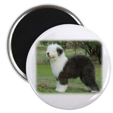 "Old English Sheepdog 9F055D-17 2.25"" Magnet (100 p"