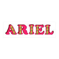 Ariel 21x7 Wall Peel