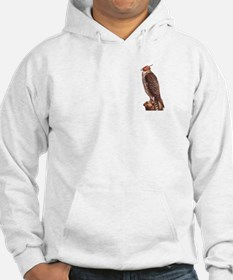 Falconry - Worth It! Jumper Hoody